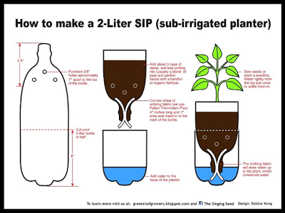 Reuniting Kids w/ Nature – Self-Watering Containers