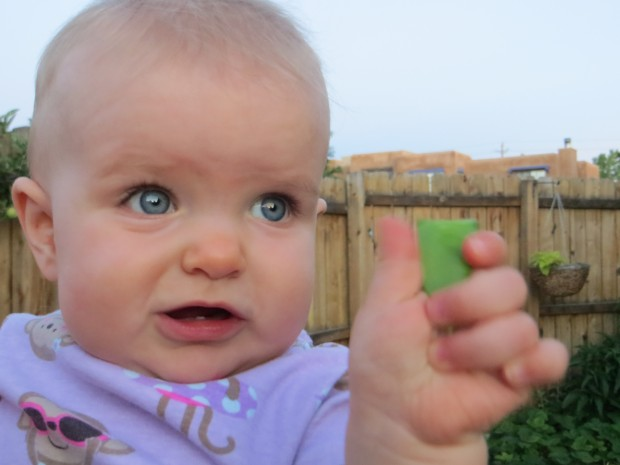 Sprout with a fresh snap pea