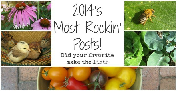 2014's Most Rockin' Posts