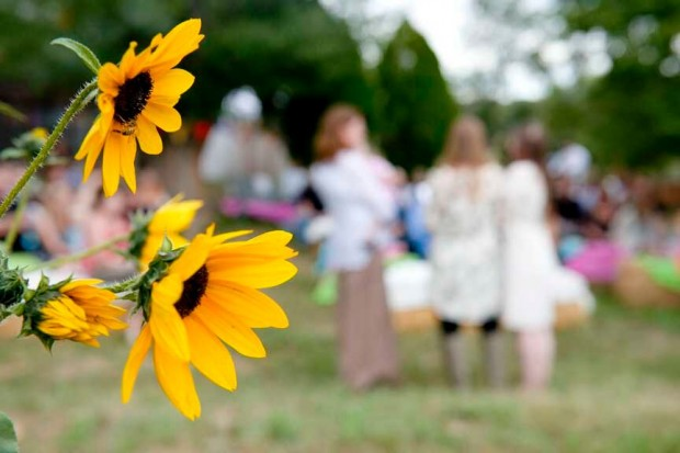 Sunflowers and Ceremony